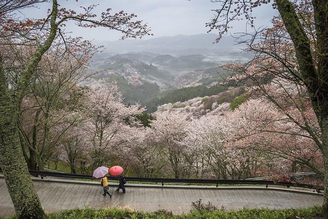 Nara by かねのり 三浦 from Pixabay